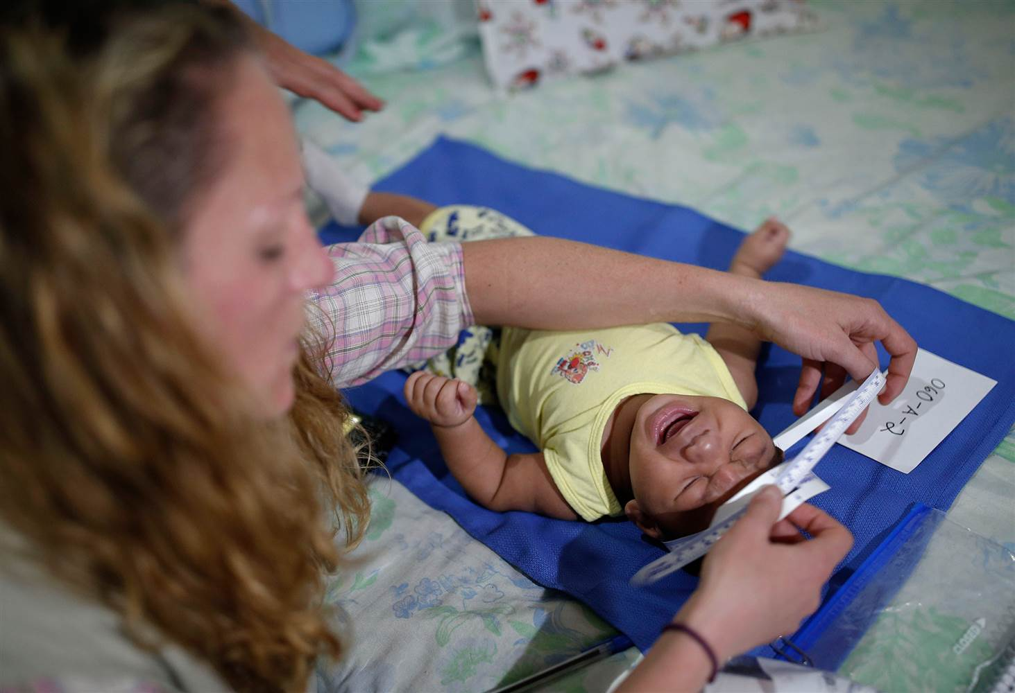 Brazilian Researchers Join With U S  in Hunt for Zika Vaccine